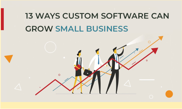 custom software small business growth business people looking